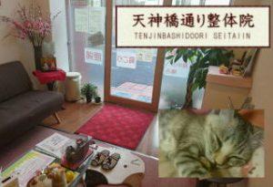 tenjinbashi-seitai1